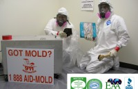 mold remediation West Palm Beach