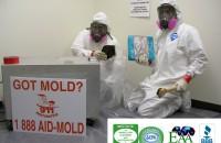 mold remediation West Palm Beach