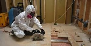 Water Damage Haverhill Mold Removal Process