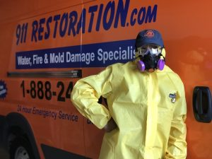 A Technician After A Successful Mold Removal Job