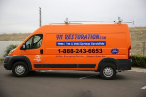 Water Damage and Mold Removal in West Palm Beach